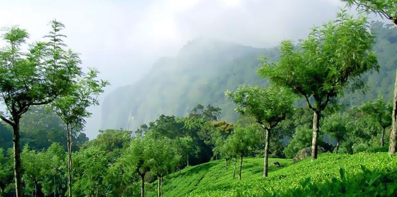 conoor-hills
