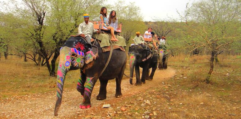 Elefantastic-Jaipur