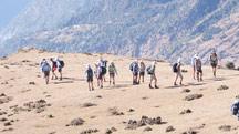 Kuari Pass Trekking Tour