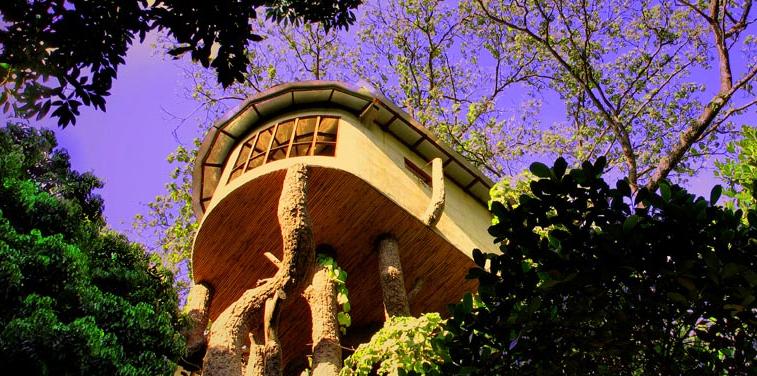 the-den-resort-corbett