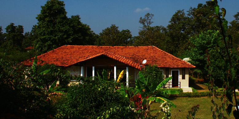 kanha-jungle-lodge