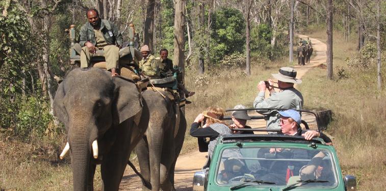 kanha-safari