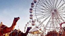 Pushkar Festival Tour