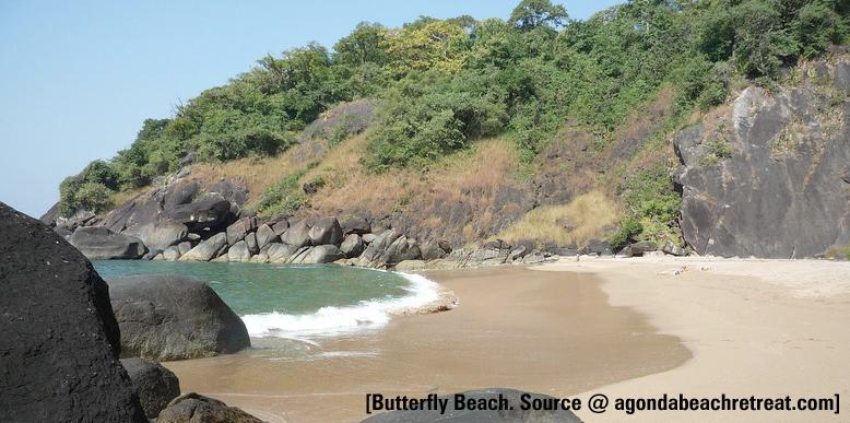 butterfly-beach