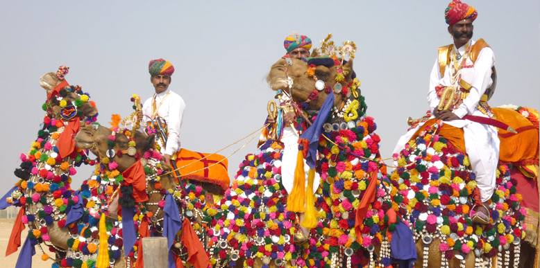 Camel Decoration Competition