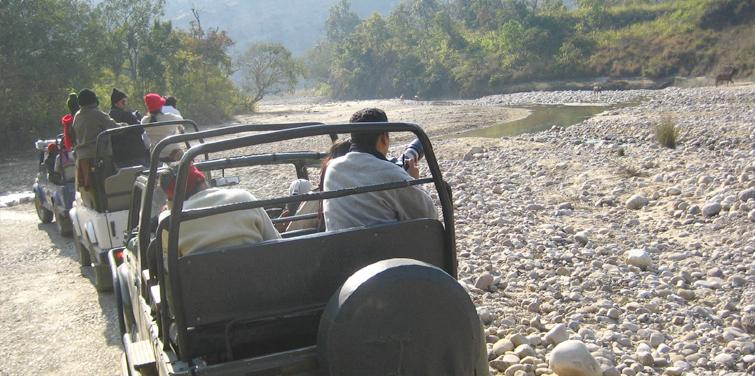corbett-jeep-safari