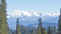 Delhi - Shimla Weekend Tour