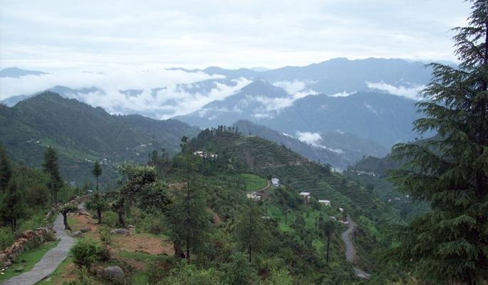 Khirsu