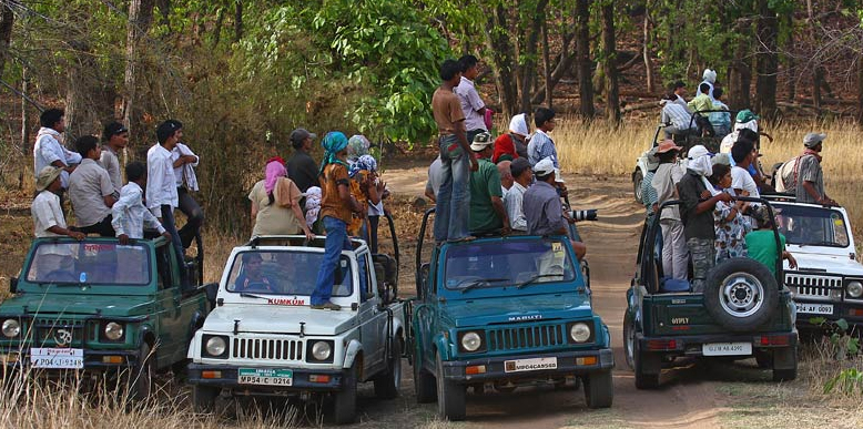 Bandhavgarh National Park Madhyapradesh