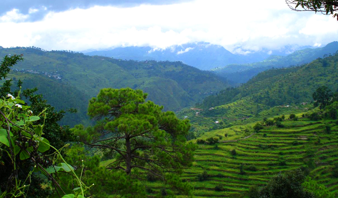 Ranikhet in Monsoon