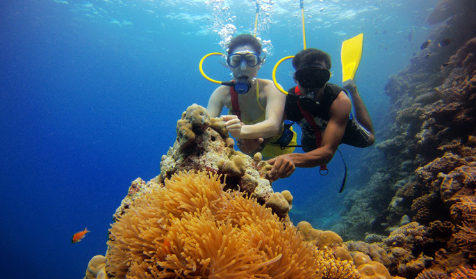 Scuba Diving @ Bangaram Island