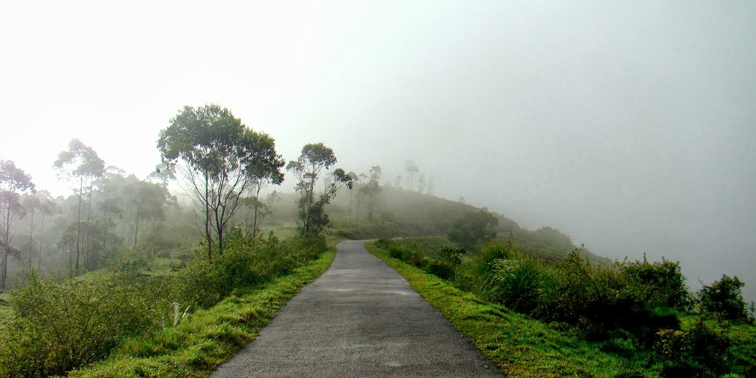 Top 20 Hill Stations In Kerala Tour My India