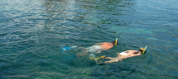 Andaman-Snorkelling