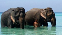Port Blair with Havelock Island Beach Tour