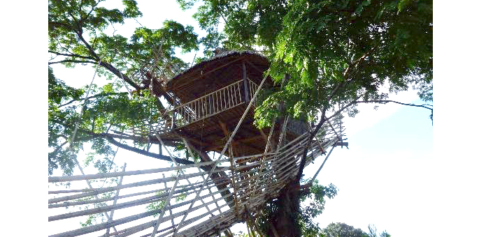 tree-houses-in-Mawnlynnong