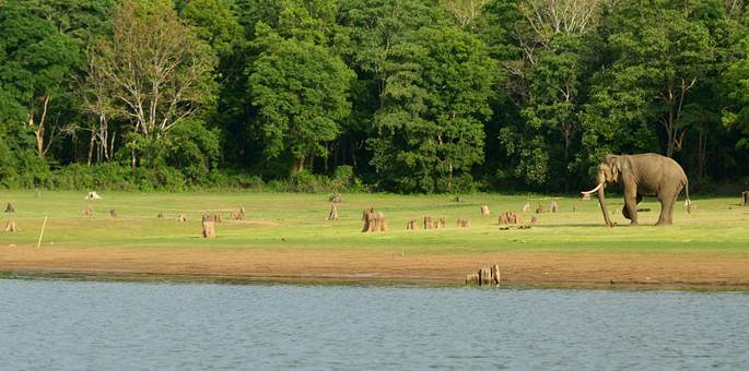 Kabini-National-Park