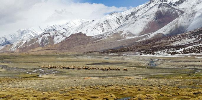 Nimaling-Plateau