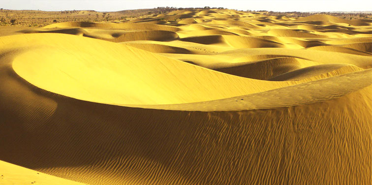 sam-and-sand-dunes