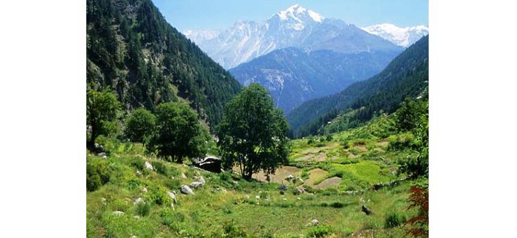 great-himalayan-national-pa