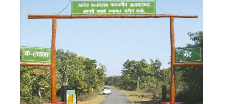 Umred---Kharandla-Sanctuary