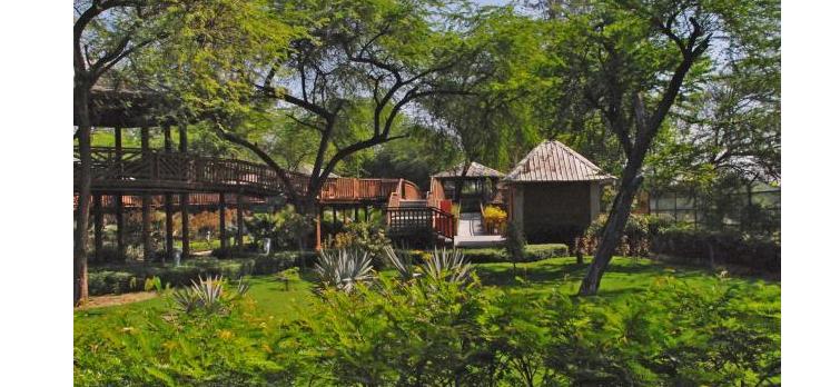 Delhi Eco-Tourism Park