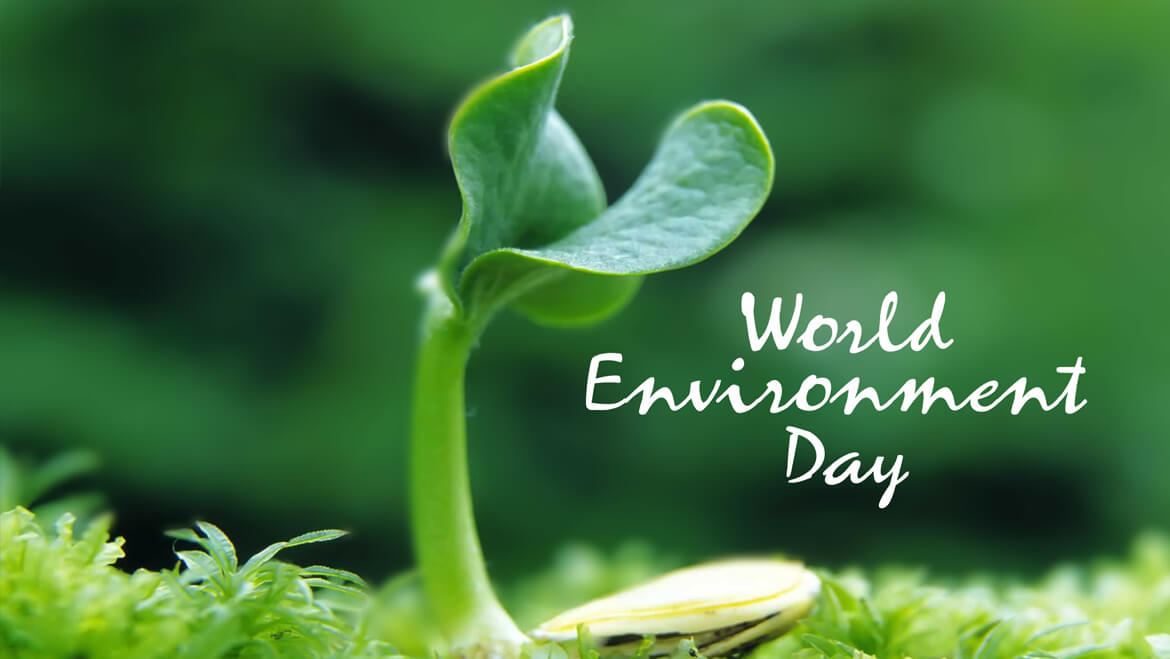 World Environment Day 2018: Let Us Paint the World Green