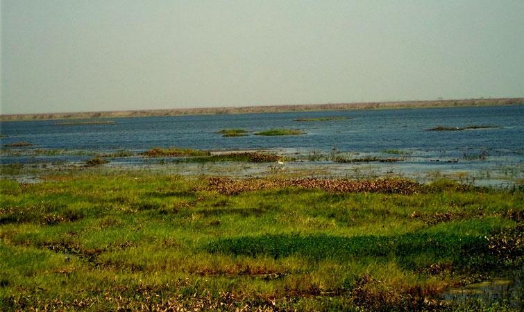 Bakhira Bird Sanctuary