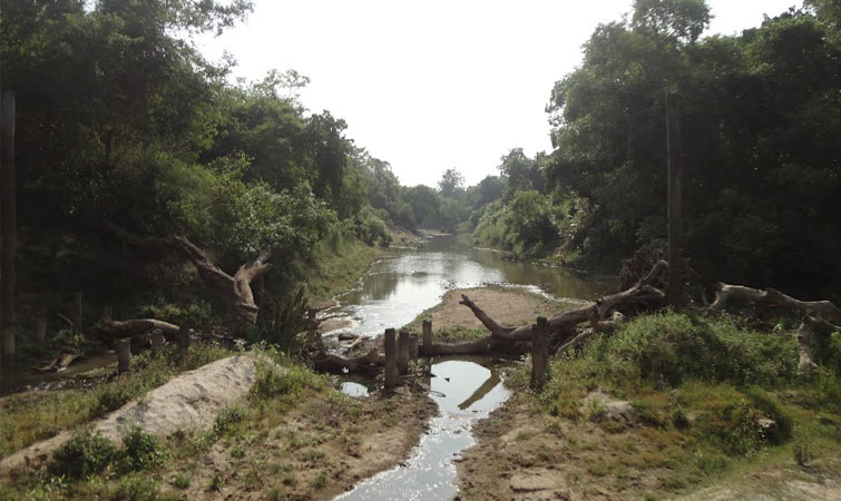 Sohagi Barwa Wildlife Sanctuary