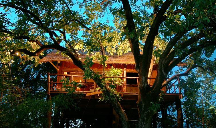 Tree House Hideaway Resort, Bandhavgarh