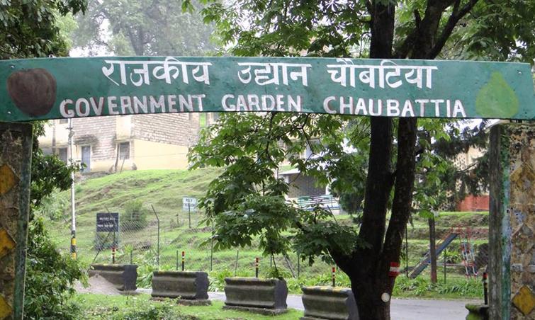 Chaubatia-Garden