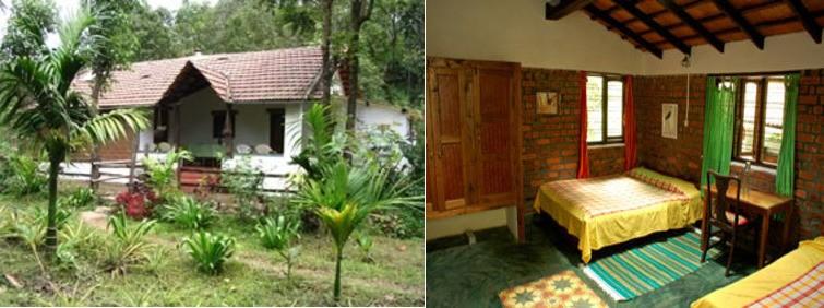 Rainforest Retreat at Mojo Plantation
