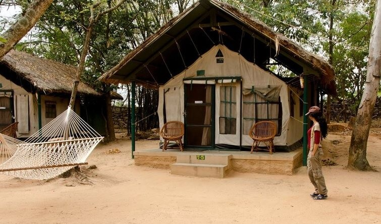 Bannerghatta Jungle Lodge