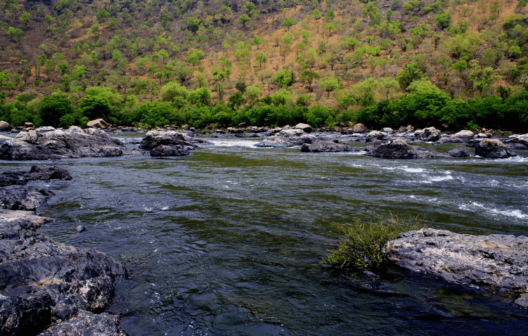 Doddamakali
