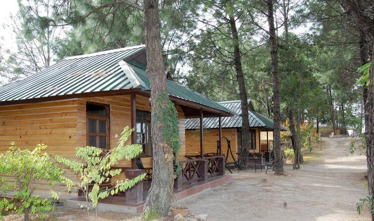 Parkwoods Shoghi, Shimla