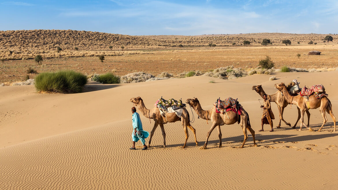 Visual Experience of Rajasthan That You Just Can't Afford to Miss