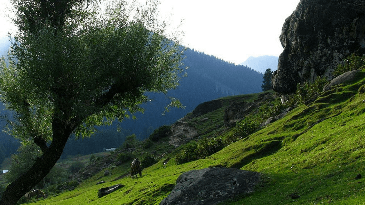 14 Must See Places in Pahalgam