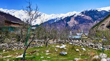 Manali Hioliday Tour Package