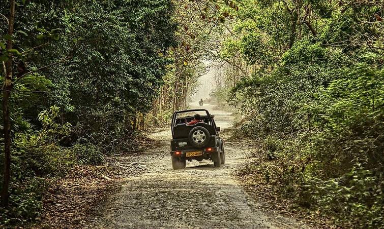 Corbett Safari