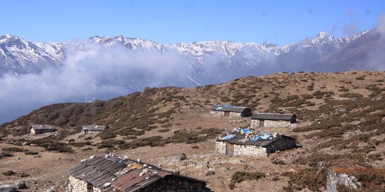 Dzongri Nambu trek