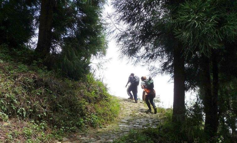 Yambong Singalila Trek
