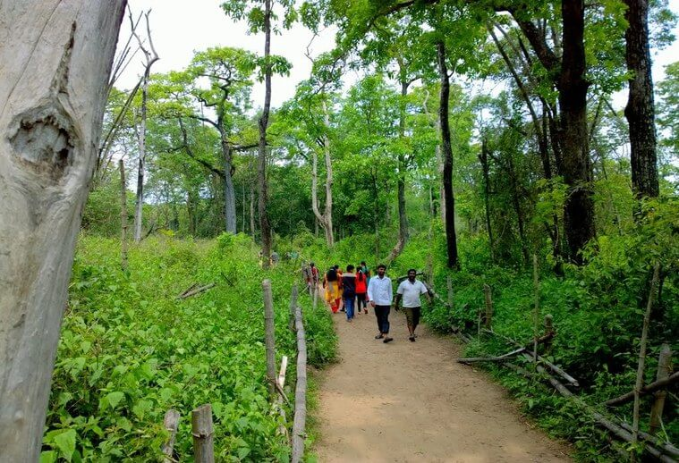 Kuruvadweep, Kerala