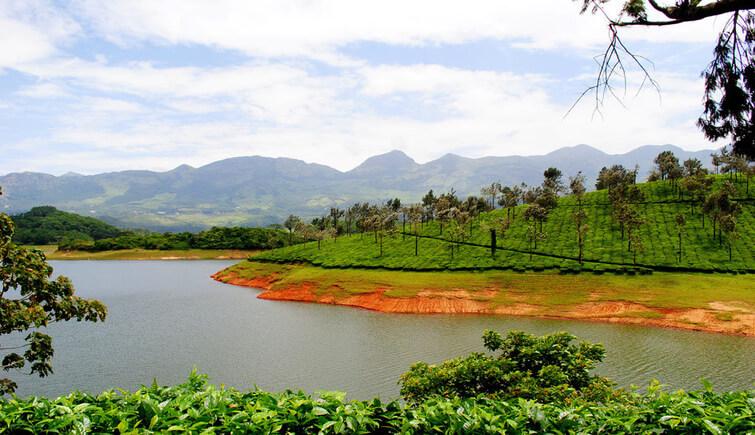 Enjoy Wildlife at Anayirankal