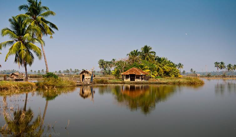 Enjoy rustic life at Kadamakkudy