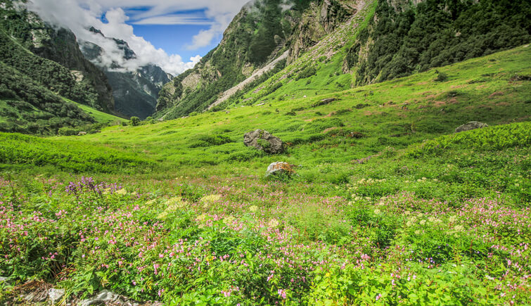 History of Valley of Flowers