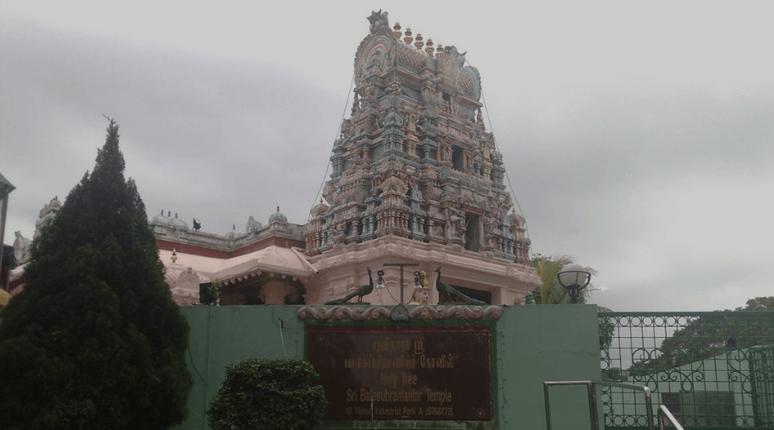 Holy Tree Sri Balasubramaniar Temple