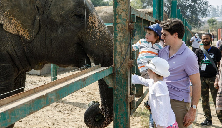 Wildlife SOS Elephant Conservation and Care Centre