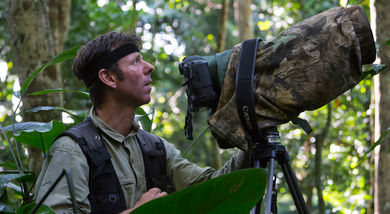 Cyril Ruoso Wildlife Photographer