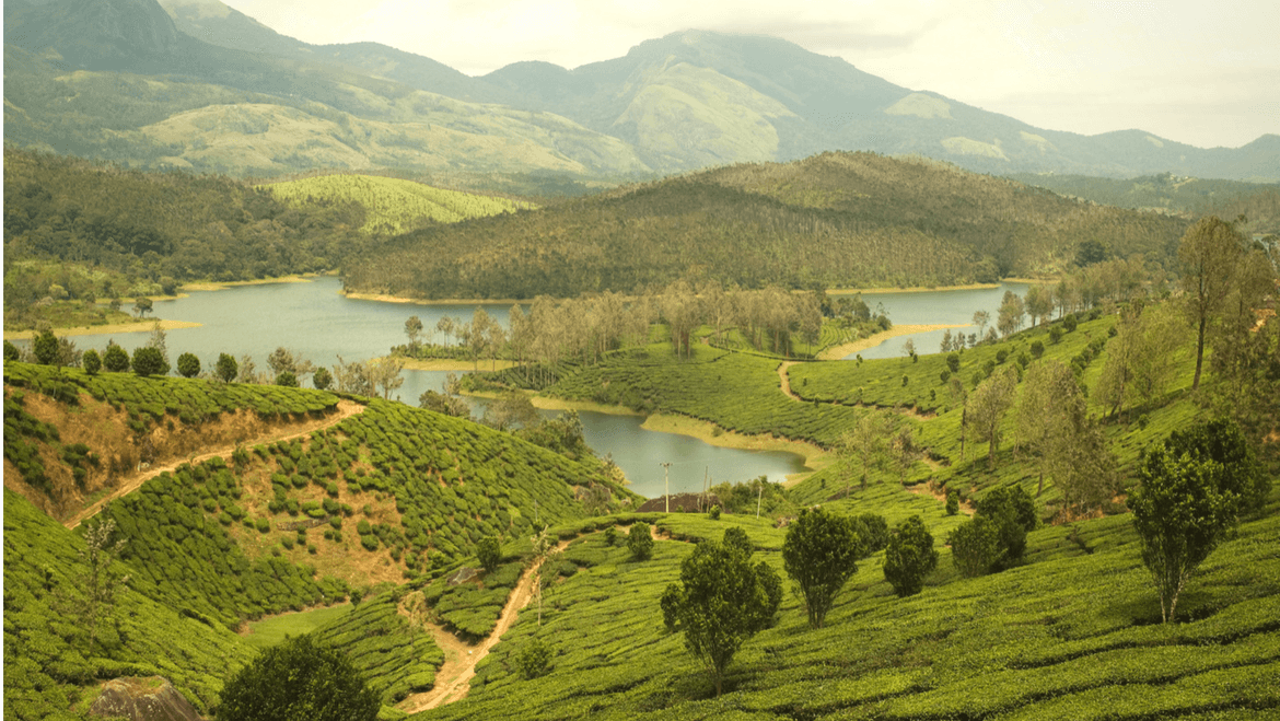 What to See and Do in the Gorgeous Yelagiri Hill Station?