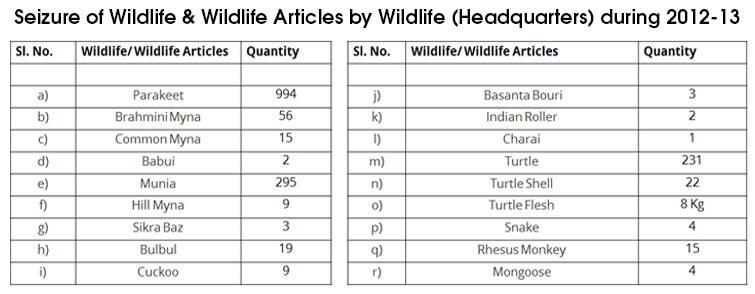 wildlife-seizures