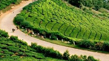 Enchanting Kerala Holiday Package